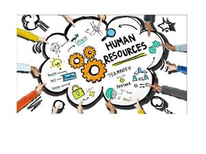 Human Resources Team Work